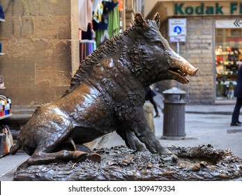 Florence, ITALY - 19 Jan, 2019 : Bronze fountain of a boar, Statue of the boar one of the landmarks of Florence located near Mercato del Porcellino.