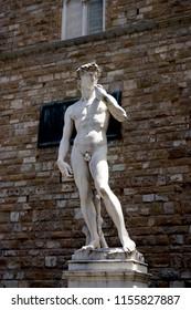 Florence, Statue of David by Michelangelo, La Signoria square, Tuscany, Italy