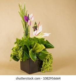 flores alcatras verde lila blanco