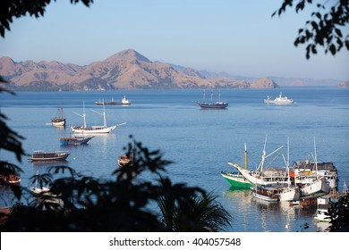 FLORES, INDONESIA - 19 JUNE, 2014: Famous Flores island harbor called Labuan Bajo, where people start their trip to Komodo and Rinca National park.
