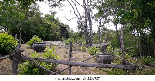 Florest on Itamatamirim, interior of pernambuco, Brazil.