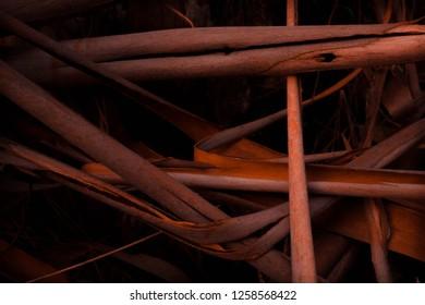 Florest Wood Orange