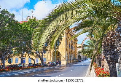 FLORIANA, MALTA - JUNE 17, 2018: The shady St Anna avenue with lush palm trees and scenic edifices, on June 17 in Floriana.