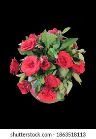 Floribunda is a modern group of garden roses that was developed by crossing hybrid teas with polyantha roses, the latter being derived from crosses between Rosa chinensis and Rosa multiflora.