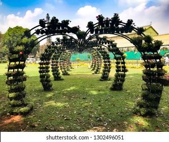 floriculture in park. Grand design for flowering