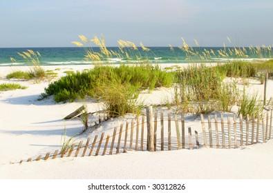 Florida Beach, Sand Dunes and Sea Oates