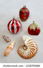 Florida Christmas Tree Ornaments Consisting of Shells and Ornaments on a White Sand Beach