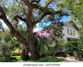 Florida Home Scene