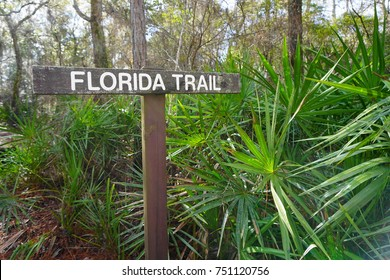 FLORIDA - JANUARY 17, 2015: Florida Trail sign in the Suwannee River section of the Florida National Scenic Trail. Behind the sign, pine flatwoods and saw palmetto dominate the ecosystem in the area.