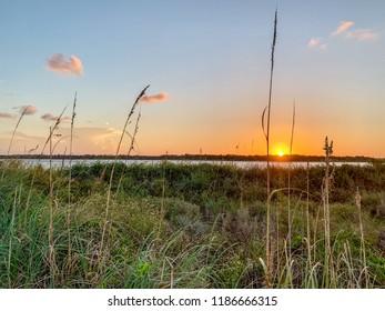 Florida landscape of beach sunset.