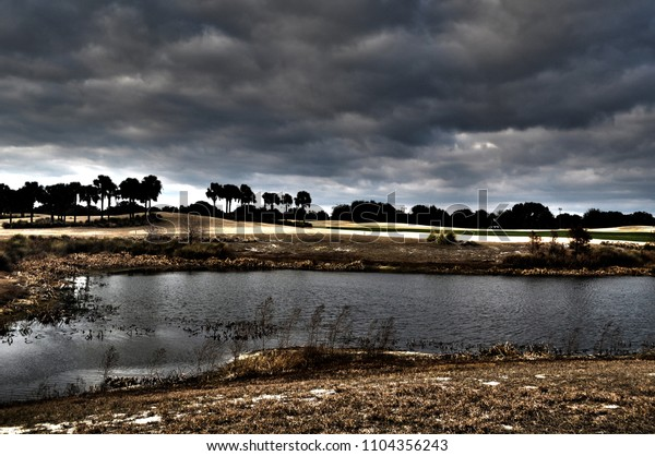 A Florida landscape with pond