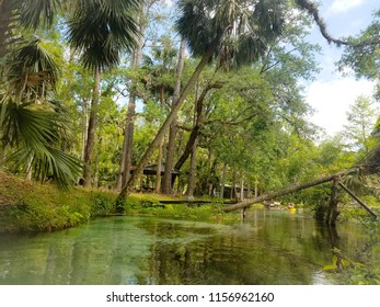 Florida natural springs in summer
