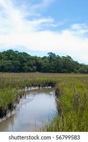 Florida saltwater creek in mid day sun.