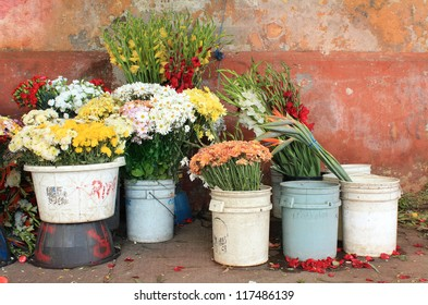 Florist Stall in Guatemala City against vintage wall