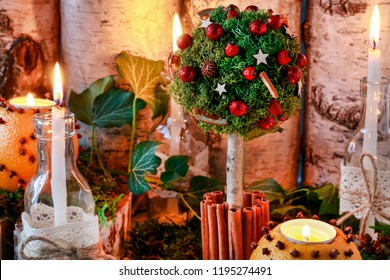 Florist at work: How to make beautiful Christmas decoration in tree shape with moss, cinnamon sticks and rose hip. Step by step, tutorial.