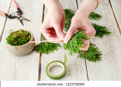 Florist at work: How to make beautiful Christmas decoration in fir shape using thuja twigs and moss. Step by step, tutorial.