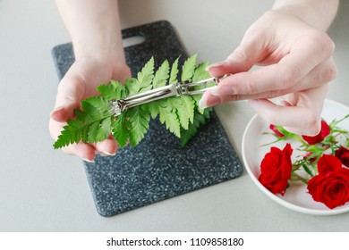 Florist at work: How to make a hair clip with fresh flowers and fern. Step by step, tutorial.