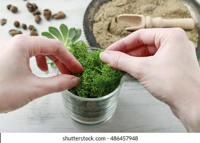 Florist at work: How to make lovely present for wedding guests with tiny glass container, sand and succulent plant. Step by step, tutorial.