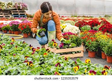 Florist working in nursery home