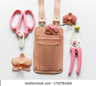 Floristic tools: pink holster, pruner shears and scissors on a white background - Shutterstock ID 1710781606