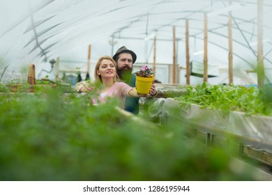 floristics. happy couple loves floristics. floristics greenhouse. man and woman has floristics business. working with plants is great pleasure