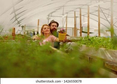 floristics. happy couple loves floristics. floristics greenhouse. man and woman has floristics business. working with plants is great pleasure