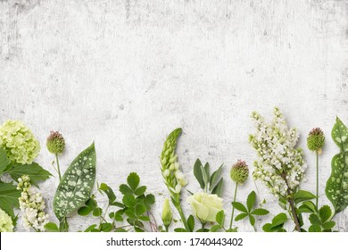 floristry or garden themed background with various natural wild flowers, leaves, plants and foliage as a border on a rustic white painted wooden table - romantic seasonal design element - top view