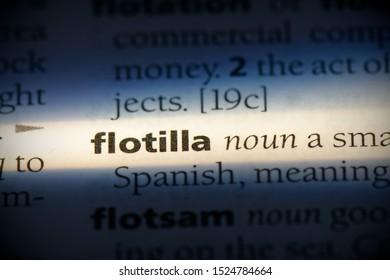 flotilla word in a dictionary. flotilla concept, definition.