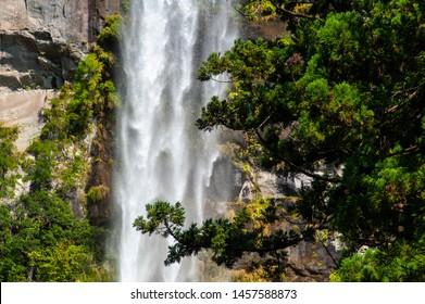 Flow of trees and huge waterfall of Wakayama Shrine