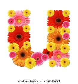 flower alphabet, u, lower case character
