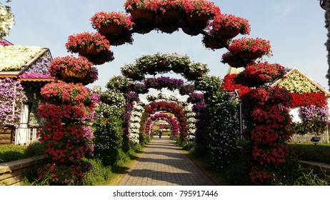Flower arches at miracle garden.