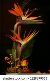 Flower arrangement black background