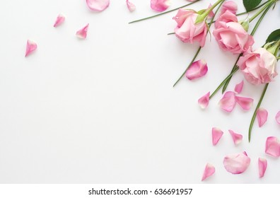 Flower arrangement of pink roses and petals on a white background.Holiday concept