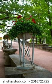 flower arrangement in a pot in the park close up