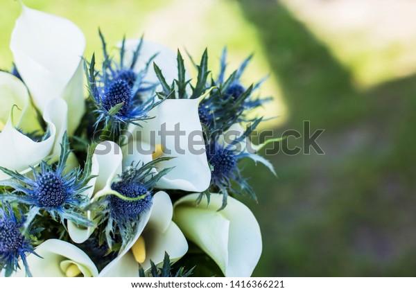 Flower Arrangement Wedding Blue Thistle White Stock Photo Edit Now 1416366221