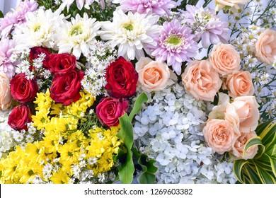 Sprüche Flower Stockfotos, Bilder und Fotografie | Shutterstock