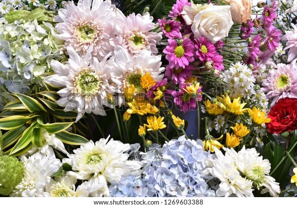 Flower Arrangements Sayings Stock Photo (Edit Now) 1269603388