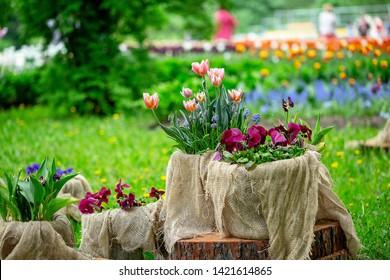 flower arrangements in the summer Park