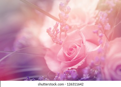 flower background. beautiful flowers made with color filters