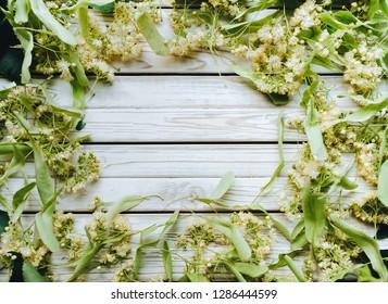 Flower background of linden. Herbal tea from linden. Alternative medicine. Copy space? rustic background.