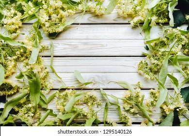 Flower background of linden. Herbal tea from linden. Alternative medicine. Copy space.