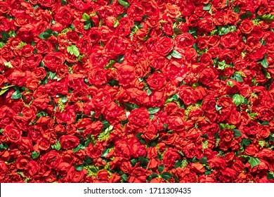 Flower background of red roses