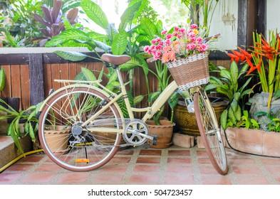 flower in basket of vintage bicycle
