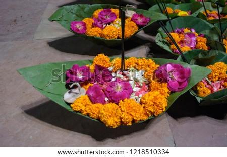 Pilgrims Flower