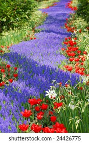 Flower bed with blue and red flowers.
