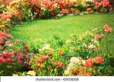 Flower bed with bright colourful flowers in botanical garden