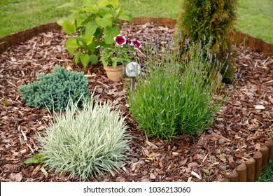 Flower Bed With Bark Mulch Images Stock Photos Vectors