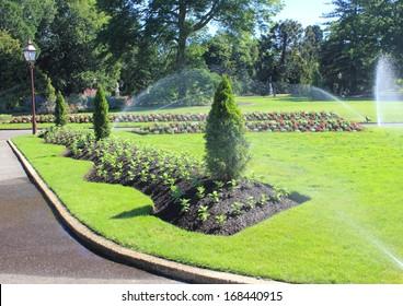 Flower beds being watered by sprinklers in Australian botanical gardens