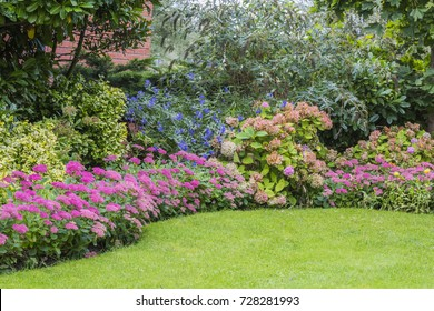 Flower beds in a home garden with bushes and pink stone crops, even called sedum