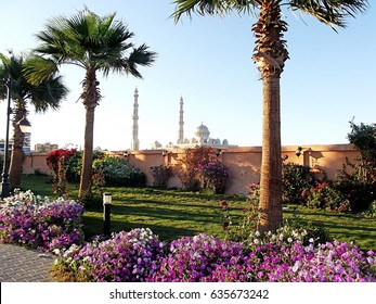 Flower beds with petunias and palms in marine, Hurgada, Egypt